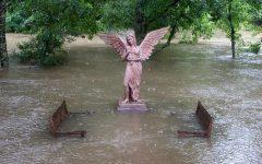 The Thousand Year Flood