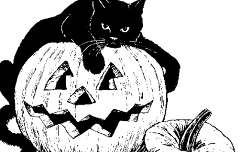 The Authored Ascension Holds Second Annual Halloween Short Story Contest