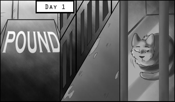 Waiting in July: Issue 1, page 1