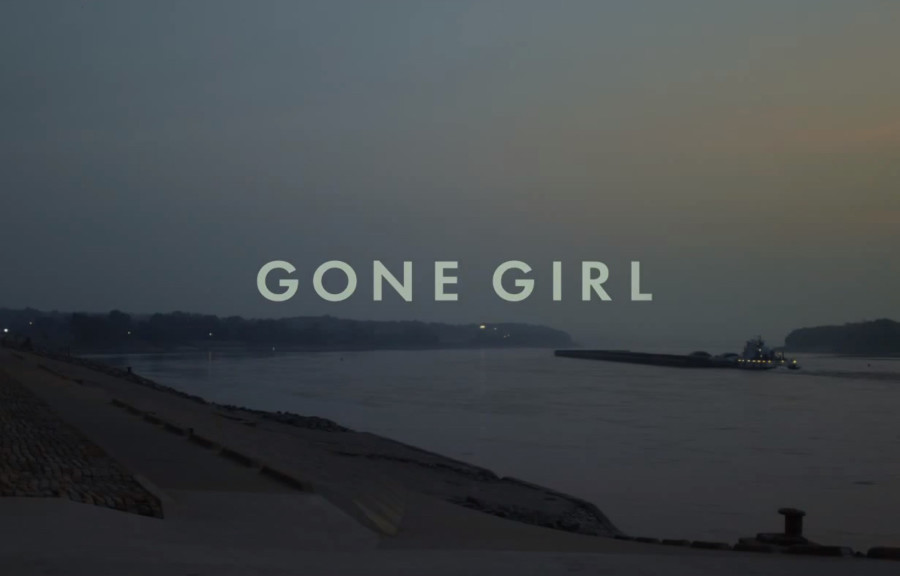 Fast Film Review: Gone Girl