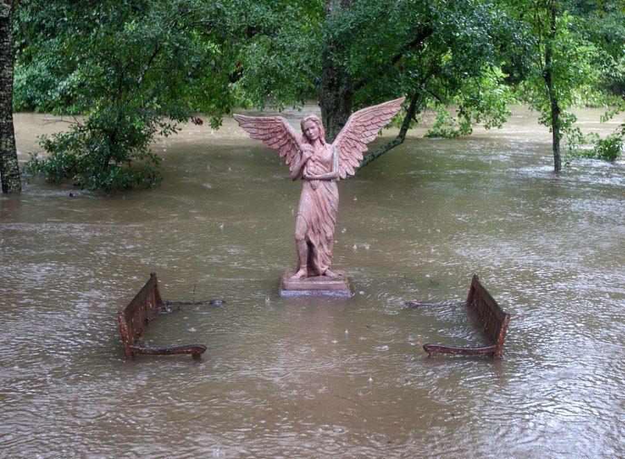 The+Thousand+Year+Flood