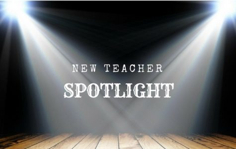 New Teacher Spotlight: Part II