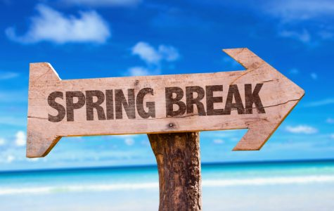 Things to do with Your Life: Spring Break