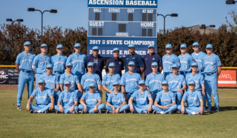Blue Gator Baseball: On The Road to Success